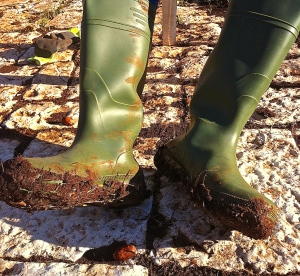 We've invested in rubber boots for work on the property—a wise move.