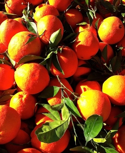 Oranges from nearby Massafra near the Ionian coast.
