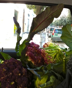 Headed back to Martina Franca, we make room for the vegetable bounty we harvested.