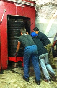 Members of the extended Sisto family collaborate to operate the family olive mill.
