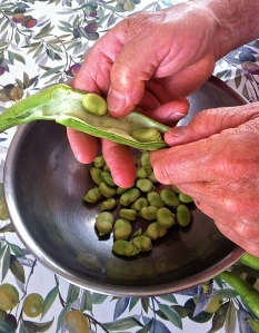 Contemplating liberation while podding fava beans on the Festa della Liberazione in Italy.