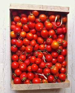 Just the beginning of a beautiful season of tomatoes in Puglia.
