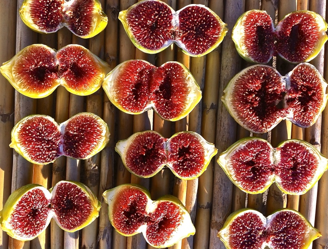 Our figs are drying on cane mats in the sun on our terrace.