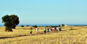 One of Millenari di Puglia's treks across the fertile Fasano to Ostuni plain next to the Adriatic shore (Photo credit: www.ulivisecolaridipuglia.com).