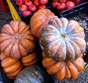 Italian pumpkin looks like the model for Cinderella's coach and tastes rich and earthy.