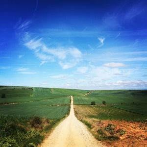 The Camino de Santiago is a very long walk across Spain.