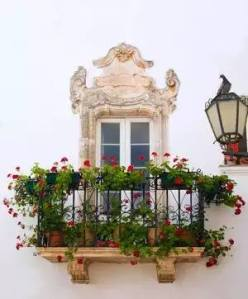 Martina's Baroque balconies and windows are now adorned with floral displays in a show of civic pride motivated by the Barocco in Fiore competition.