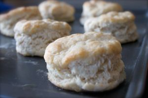 Flaky buttermilk biscuits are not particularly sweet, which makes them a perfect foil for the strawberries and whipped cream that adorn them.