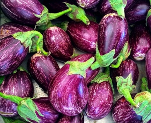 Creamy white and violet-striped eggplant have just started to appear in Martina Franca's fruit and vegetable market.