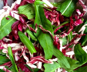 Vibrant colors in arugula and radicchio make this composed salad incredibly appealing.