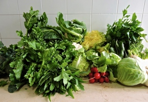 Our most recent haul from the fruttivendolo (vegetable vendor) across the street. All this set us back $10.00.