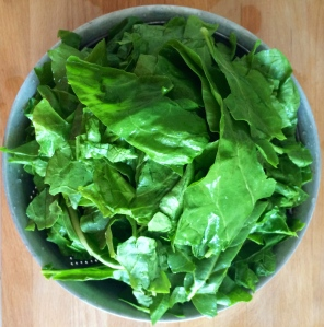 Washed, rinsed and de-stemmed, Swiss chard leaves are ready to add to the sauteed onions, leeks and stems.