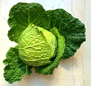 Verza or green cabbage, is the backbone of this dish. Look for one with big leaves and a nice, tight head.