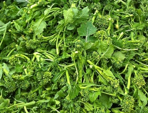 Broccoli rabe has an earthy, assertive flavor that promises loads of antioxidants in very spoonful of soup.